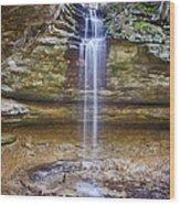 Tannery Falls Wood Print