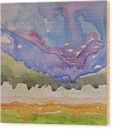 Taos Fields Wood Print