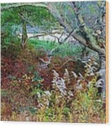 Tapestry Of Colors Wood Print