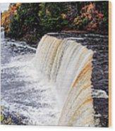 Taquamenon Falls II Wood Print