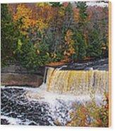 Taquamenon Falls IIi Wood Print