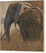Tarangire Bull Wood Print by Aaron Blaise