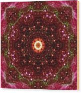 Tarantula Nebula II Wood Print