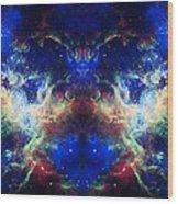 Tarantula Reflection 1 Wood Print