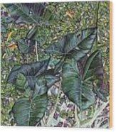 Taro Garden Wood Print
