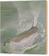 Tarpon Breaking Water Wood Print