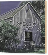 Tarpon Springs Warehouse II Wood Print