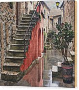 Tarquinian Red Stairs Wood Print