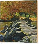 Tarr Steps In Somerset Wood Print