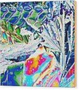 Tartaric Acid Crystals In Polarized Light Wood Print
