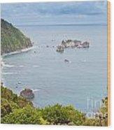 Tasman Sea At West Coast Of South Island Of New Zealand Wood Print