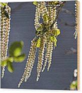 Tassels In The Breeze Wood Print