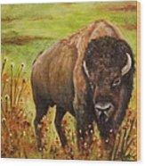 Tatanka, Buffalo  Wood Print
