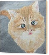 Tater Bud Kitty Wood Print