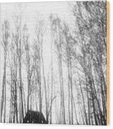 tathata #19NULLUS2 Wood Print by Alex Zhul
