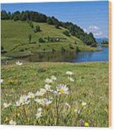 Tau Mare Lake Wood Print