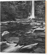 Taughannock Black And White Wood Print