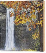 Taughannock Falls And Maple Wood Print
