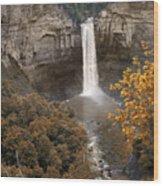 Taughannock Falls Park Wood Print