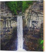 Taughannock Falls Ulysses Ny Wood Print
