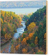 Taughannock River Canyon In Colorful Autumn Ithaca New York Panoramic Photography  Wood Print