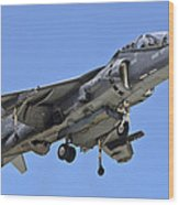 Tav 8b Harrier Jump Jet Wood Print