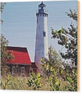 Tawas Point Lighthouse...from Tawas Bay Side Wood Print