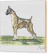 Tawny Boxer Wood Print by Joann Renner