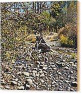 Taylor Creek Lake Tahoe Wood Print