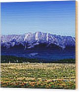 Taylor Park - Colorado Wood Print