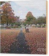 Taylor Park St Albans Vermont Wood Print