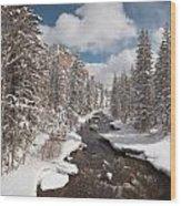 Taylor River Winter Wood Print