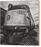 Tc 6902 Wood Print by CJ Schmit
