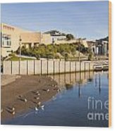 Te Papa Wellington New Zealand Wood Print by Colin and Linda McKie