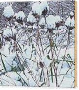 Tea Cups Of Snow Wood Print
