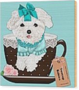Teacup Baby Maltese Wood Print by Margaret Newcomb