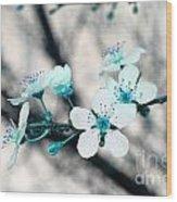 Teal Blossoms Wood Print