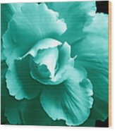 Teal Green Begonia Floral Wood Print by Jennie Marie Schell