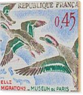 Teal Study Of Migration-museum Of Paris Wood Print