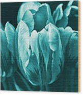 Teal Tulip Flowers Wood Print