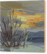 Teanaway Valley Winter Wood Print