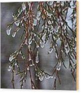 Tears Of Ice Wood Print