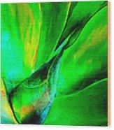 Technicolor Succulent Wood Print