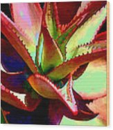 Technicolored Agave Succulent Wood Print