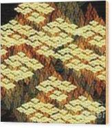 Tectonics Wood Print