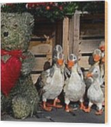 Teddy Bear With Flock Of Stuffed Ducks Wood Print