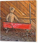 Teddy Takes A Ride Wood Print