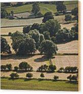 Teesdale Summer Wood Print