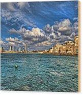 Tel Aviv Jaffa Shoreline Wood Print
