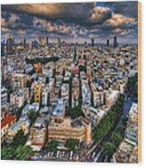 Tel Aviv Lookout Wood Print
